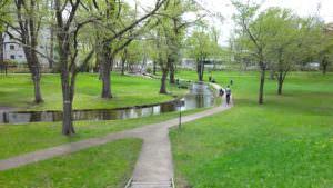 北海道大学のキャンパス周辺はとても自然が多い