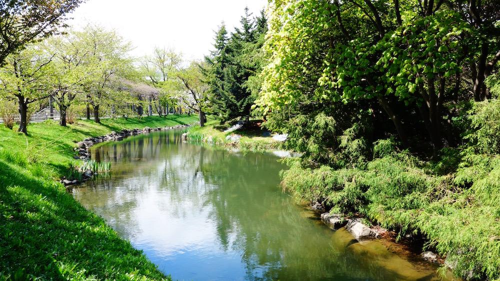 中島公園の水辺と素敵な自然