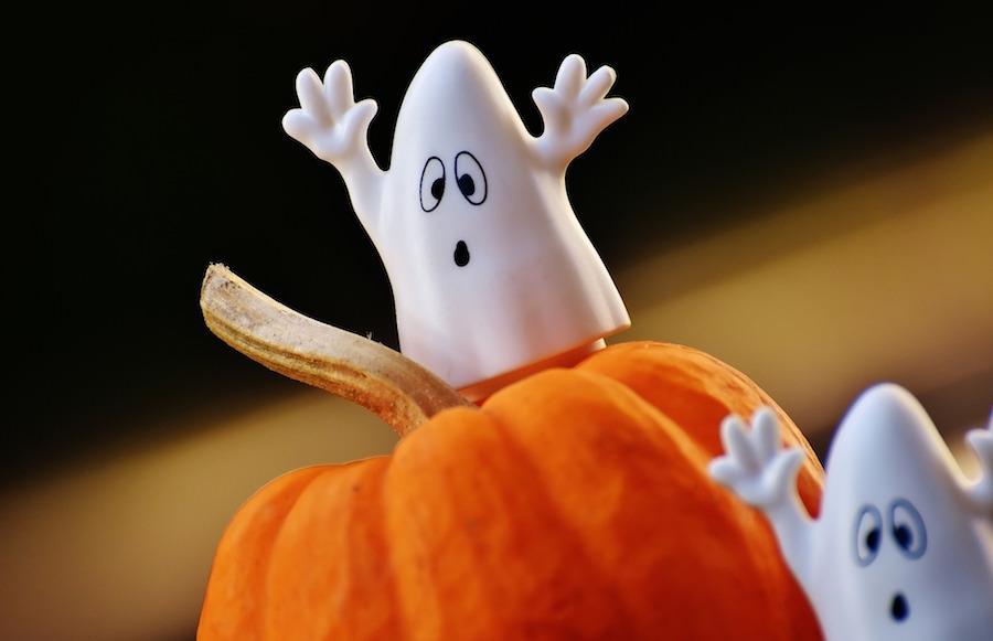 かぼちゃに乗っているかわいいお化け