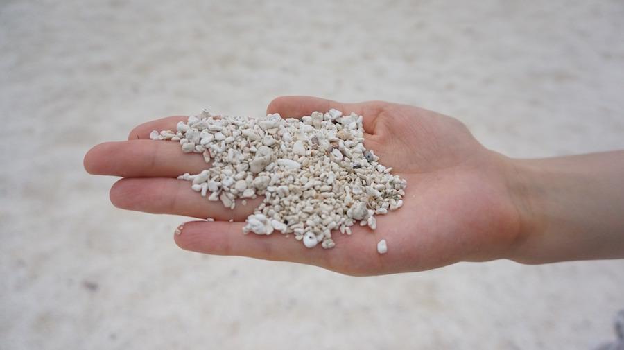 砂浜に落ちている貝殻などが粉々になった美しい砂、石や砂利