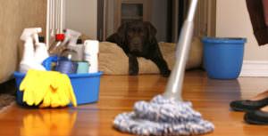 床を拭くのも運動になる!